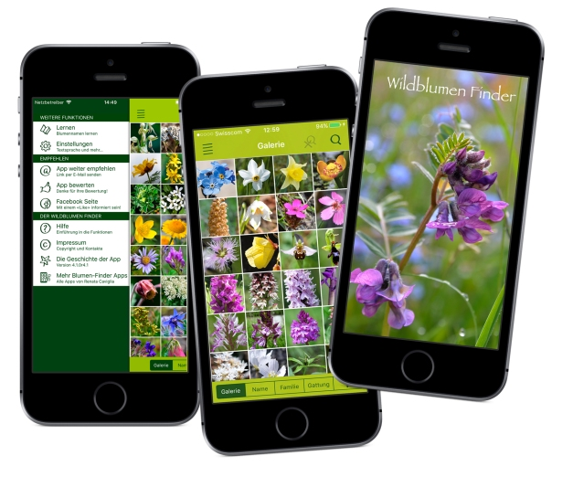 Wildblumen_Apps